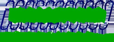 molle online mollificio trezzanese molle trazione compressione nastro torsione sagomate onda di mare ufficio qualità trezzano rosa